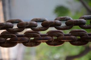 Link building network