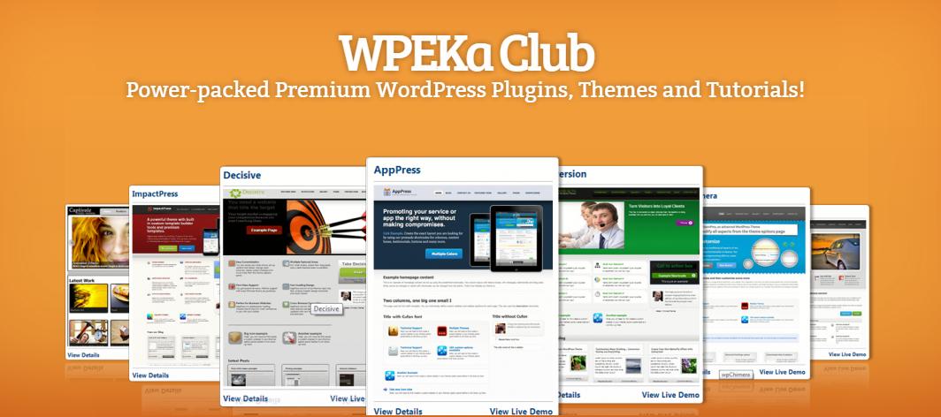 best wordpress club