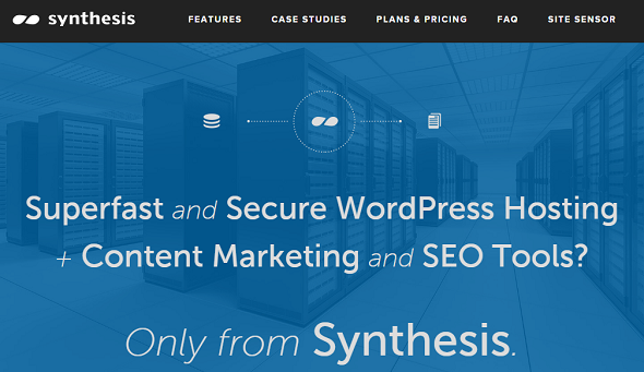 managed-WordPress-Hosting-by-Synthesis