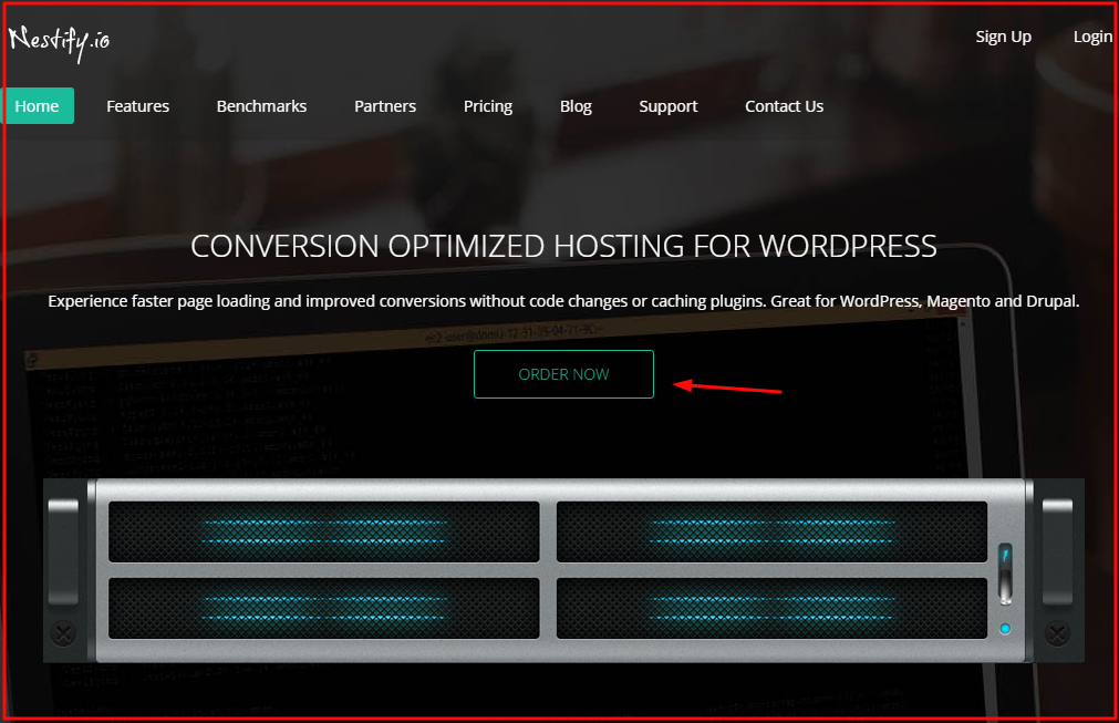 nestify web hosting