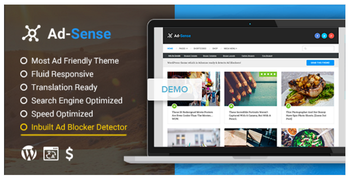 adsense-theme-wordpress