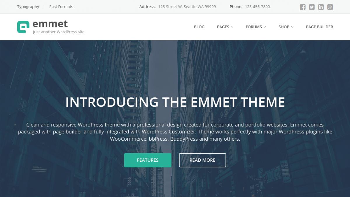 best WordPress theme for online business